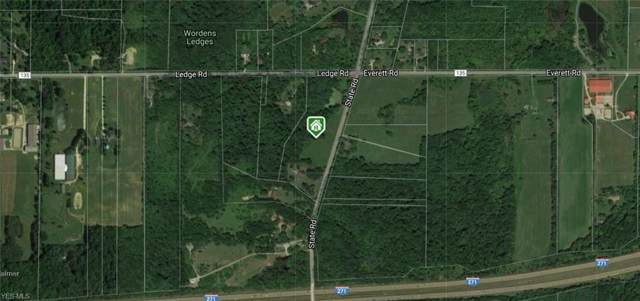 State Road, Medina, OH 44256 (MLS #4145042) :: TG Real Estate