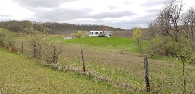 6645C High Freeland Road, Chandlersville, OH 43727 (MLS #4145301) :: The Crockett Team, Howard Hanna