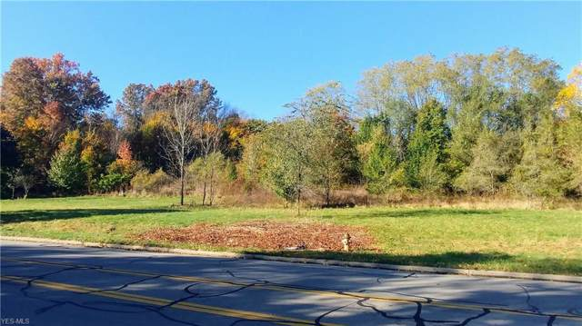 Manchester Road, Akron, OH 44319 (MLS #4145595) :: RE/MAX Edge Realty