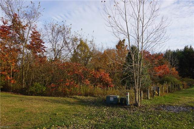 887 Pine Grove Circle, Hinckley, OH 44233 (MLS #4145675) :: The Art of Real Estate