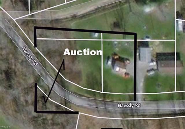 30378 Haessly Road, Hanoverton, OH 44423 (MLS #4146529) :: The Crockett Team, Howard Hanna