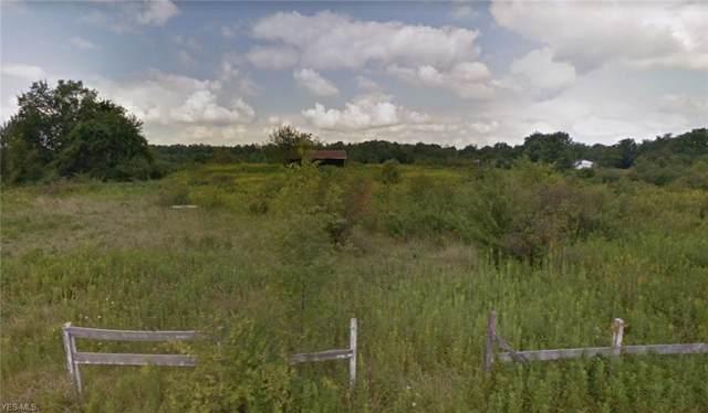Vandemark Road, Lodi, OH 44254 (MLS #4146642) :: The Crockett Team, Howard Hanna
