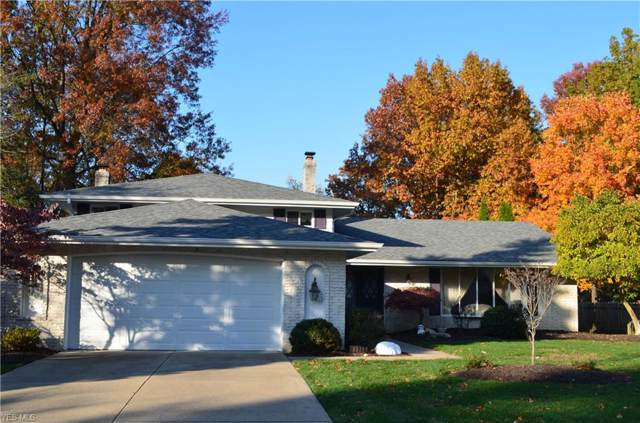 22788 Vine Court, Rocky River, OH 44116 (MLS #4146833) :: RE/MAX Trends Realty