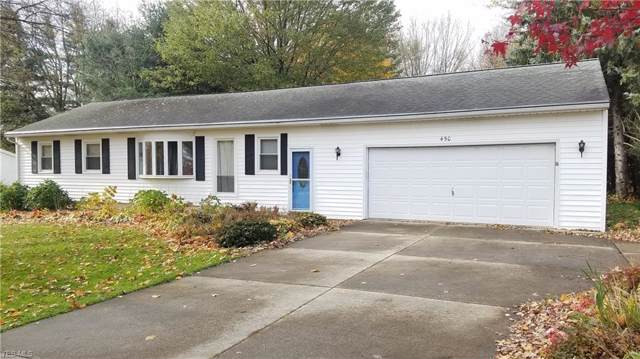 450 Silvercreek Road, Wadsworth, OH 44281 (MLS #4147838) :: RE/MAX Trends Realty