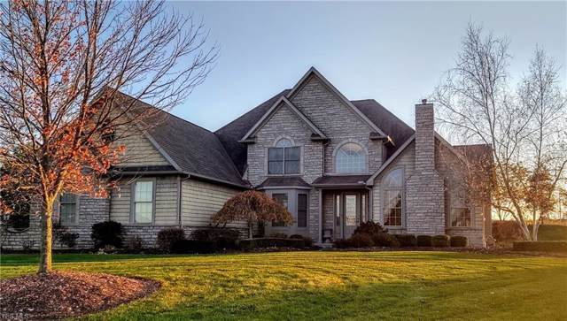 6699 Hounds Run Drive, Medina, OH 44256 (MLS #4148435) :: RE/MAX Trends Realty