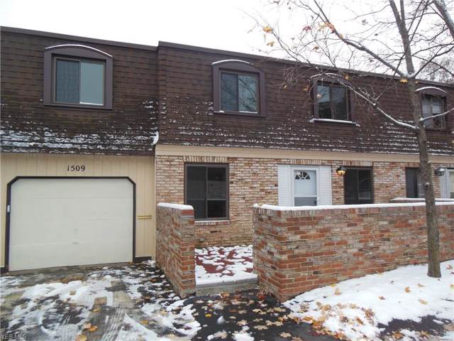 1651 Mentor Avenue #1509, Painesville, OH 44077 (MLS #4148524) :: RE/MAX Valley Real Estate