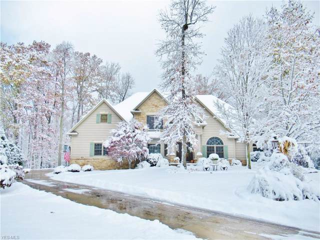 4151 Williamsburg Court, Medina, OH 44256 (MLS #4149801) :: RE/MAX Trends Realty