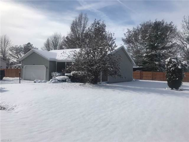 143 E Lake Court, Lagrange, OH 44050 (MLS #4150083) :: RE/MAX Trends Realty