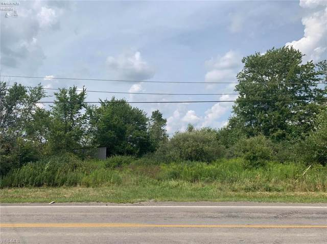 14446 State Route 301, Lagrange, OH 44050 (MLS #4150273) :: RE/MAX Trends Realty