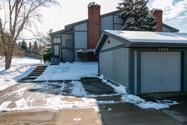 7083 Bristlewood Drive E, Painesville, OH 44077 (MLS #4150574) :: RE/MAX Trends Realty