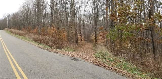 1107 Cinder Road SE, Carrollton, OH 44615 (MLS #4151840) :: RE/MAX Trends Realty