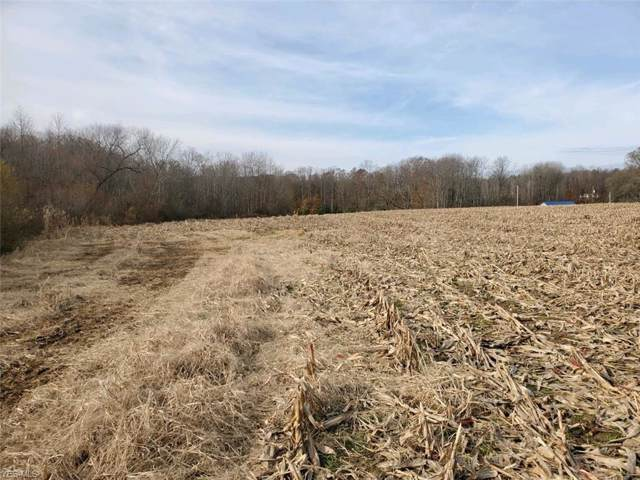 Signal Road, Columbiana, OH 44408 (MLS #4151917) :: RE/MAX Valley Real Estate