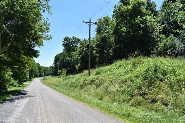 3330 Bronze Road NW, Carrollton, OH 44615 (MLS #4153271) :: RE/MAX Trends Realty