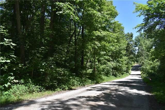 Gem Road NW, Carrollton, OH 44615 (MLS #4153274) :: The Crockett Team, Howard Hanna