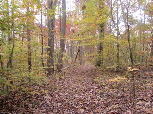 Davis Run Rd, Pennsboro, WV 26415 (MLS #4153695) :: The Crockett Team, Howard Hanna
