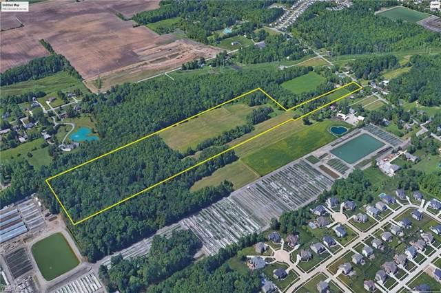 4505 Stoney Ridge Road, Avon, OH 44011 (MLS #4154610) :: Select Properties Realty