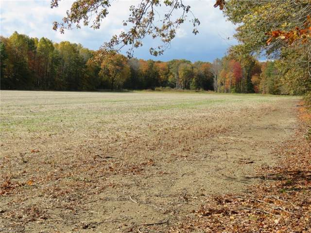 8855 Nichols Road, Freedom, OH 44288 (MLS #4155002) :: RE/MAX Trends Realty