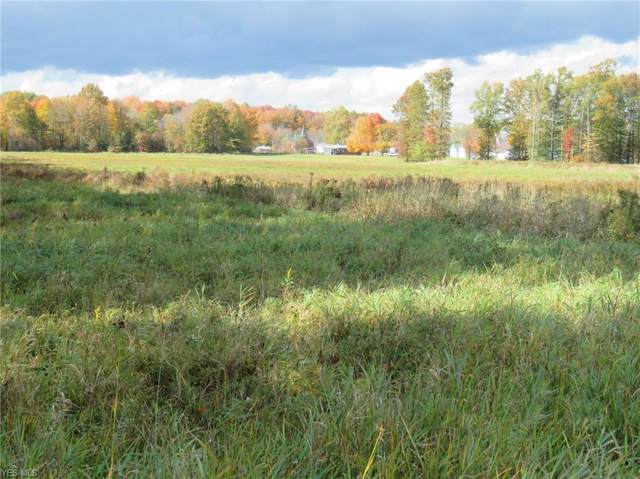 6950 State Route 303, Freedom, OH 44266 (MLS #4155038) :: RE/MAX Trends Realty