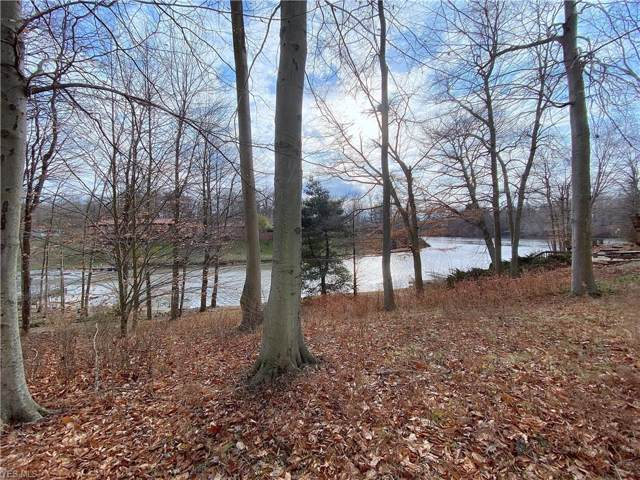 1419 Lake Vue Drive, Roaming Shores, OH 44085 (MLS #4156163) :: RE/MAX Trends Realty