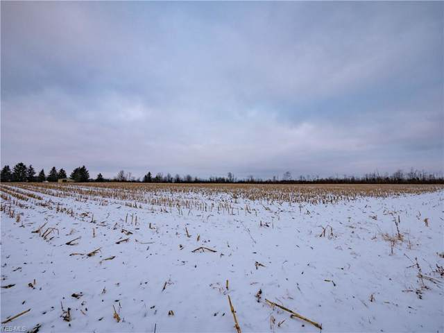 XXXX Harris Road, Lodi, OH 44254 (MLS #4156385) :: RE/MAX Trends Realty