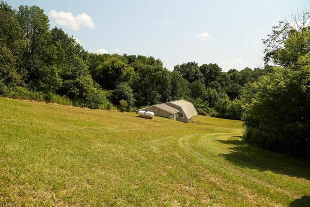 6479 Renie Road, Bellville, OH 44813 (MLS #4158243) :: RE/MAX Valley Real Estate