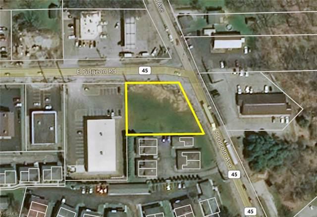 Pidgeon Road, Salem, OH 44460 (MLS #4159212) :: RE/MAX Trends Realty