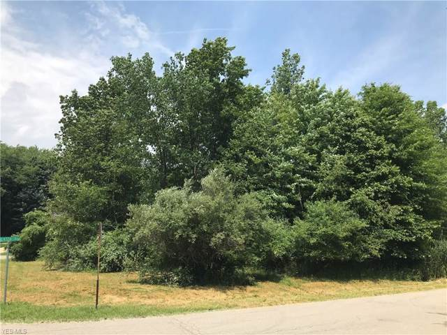 Castalia Drive, Barberton, OH 44203 (MLS #4159265) :: The Crockett Team, Howard Hanna