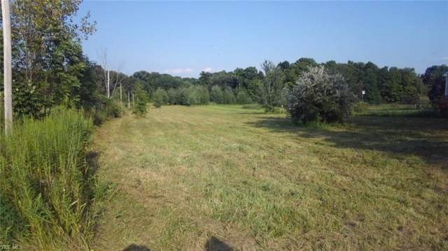 Lot 51 Stamm, Mantua, OH 44255 (MLS #4160798) :: RE/MAX Trends Realty