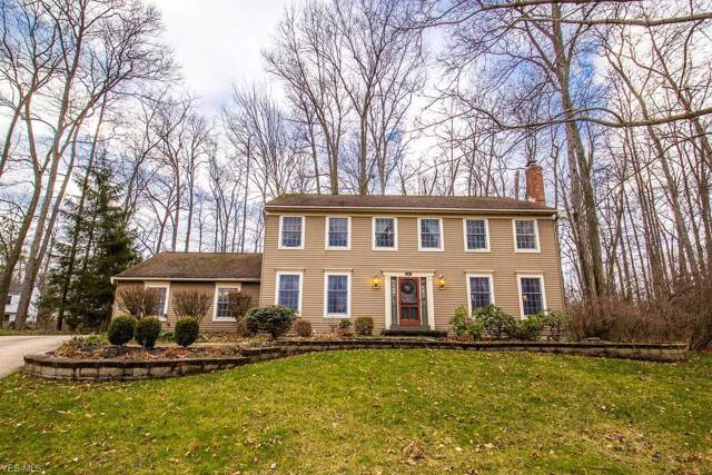 601 Larkspur Court, Medina, OH 44256 (MLS #4161517) :: RE/MAX Trends Realty