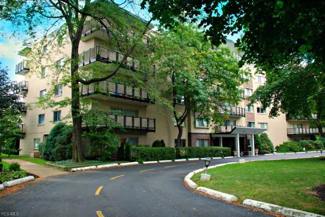 255 N Portage Path #501, Akron, OH 44303 (MLS #4161557) :: The Holden Agency
