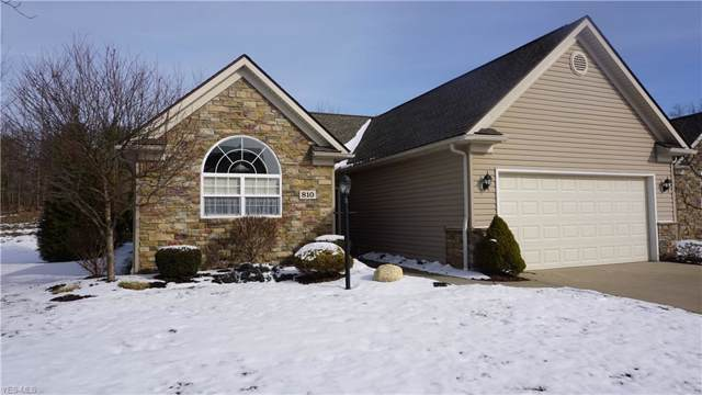 810 Lakeview Court, Kent, OH 44240 (MLS #4162559) :: RE/MAX Trends Realty