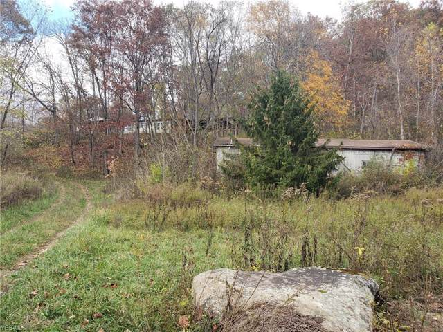 3355 Creek Road, Stockport, OH 43787 (MLS #4162888) :: RE/MAX Trends Realty