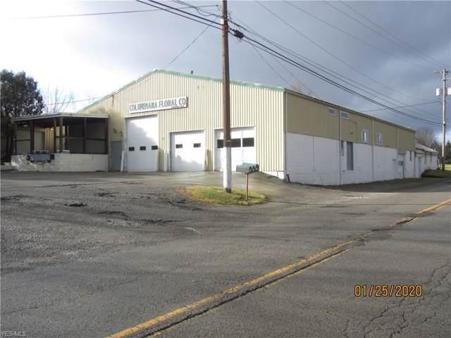 735 Springfield Road, Columbiana, OH 44408 (MLS #4163144) :: Tammy Grogan and Associates at Cutler Real Estate