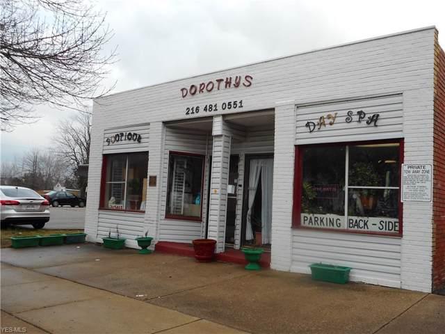 625 E 200 Street, Euclid, OH 44119 (MLS #4163197) :: The Crockett Team, Howard Hanna