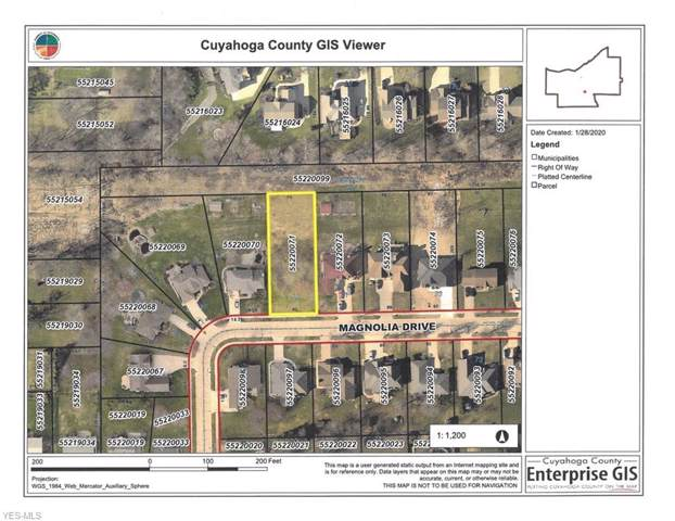 Magnolia Drive, Seven Hills, OH 44131 (MLS #4163201) :: Tammy Grogan and Associates at Cutler Real Estate