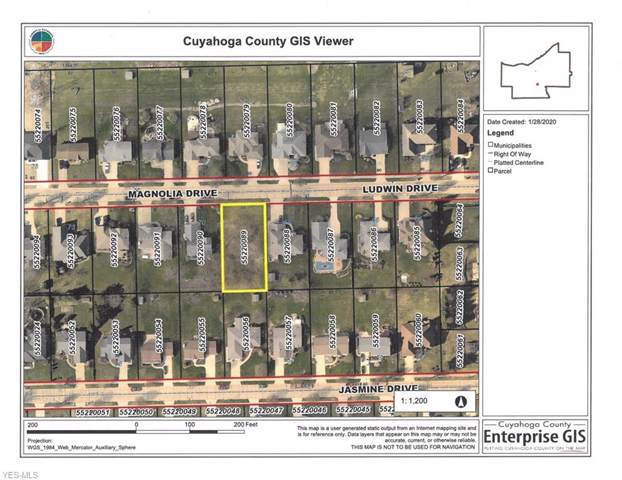 Magnolia Drive, Seven Hills, OH 44131 (MLS #4163203) :: Tammy Grogan and Associates at Cutler Real Estate