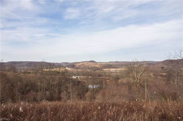 Worthing Rd, Guernsey, OH 43749 (MLS #4163290) :: The Crockett Team, Howard Hanna