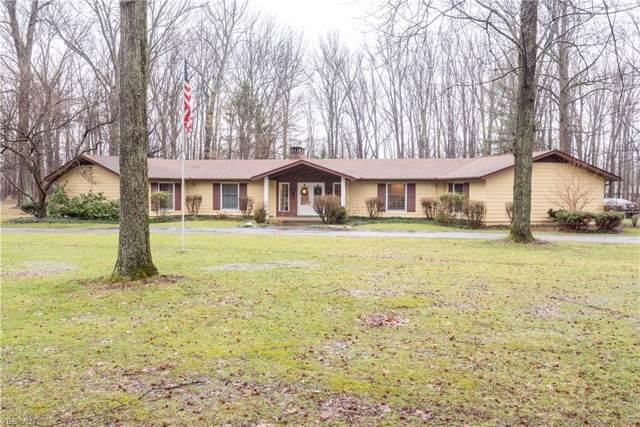 9251 Boyer Lane, Kirtland Hills, OH 44060 (MLS #4163404) :: Keller Williams Chervenic Realty