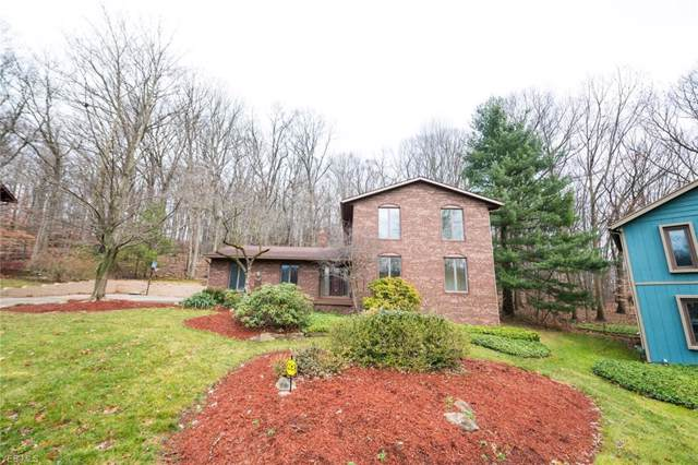 2163 Dow Drive, Fairlawn, OH 44313 (MLS #4163923) :: RE/MAX Trends Realty