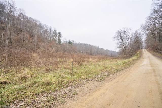 Tiny Hollow Road SW, Port Washington, OH 43837 (MLS #4164386) :: The Crockett Team, Howard Hanna