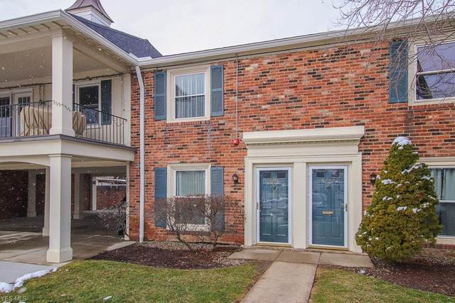 5725 York Drive, Lyndhurst, OH 44124 (MLS #4164867) :: Tammy Grogan and Associates at Cutler Real Estate