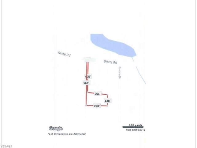 27660 White Road, Willoughby Hills, OH 44092 (MLS #4164940) :: The Crockett Team, Howard Hanna