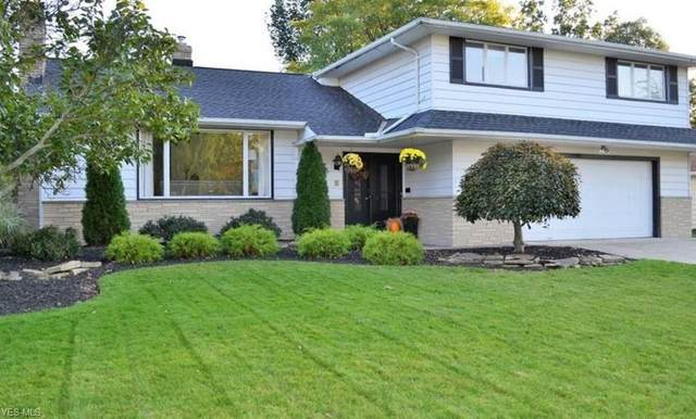 2004 Edenhall Drive, Lyndhurst, OH 44124 (MLS #4165395) :: Tammy Grogan and Associates at Cutler Real Estate