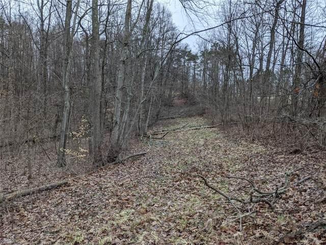 Fallen Timber Road, Port Washington, OH 43837 (MLS #4165790) :: The Crockett Team, Howard Hanna