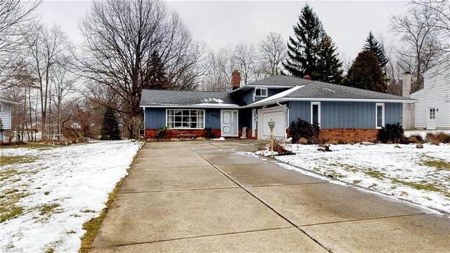 1037 Brainard Rd., Highland Heights, OH 44143 (MLS #4167504) :: The Crockett Team, Howard Hanna
