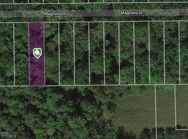 V/L Magnolia Drive, Madison, OH 44057 (MLS #4167839) :: Keller Williams Chervenic Realty