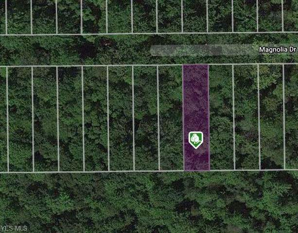 V/L Magnolia Drive, Madison, OH 44057 (MLS #4168636) :: Select Properties Realty