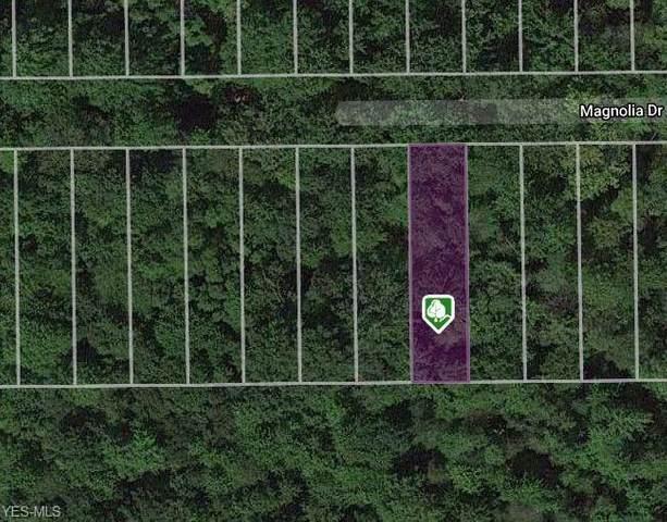 V/L Magnolia Drive, Madison, OH 44057 (MLS #4168636) :: Keller Williams Chervenic Realty