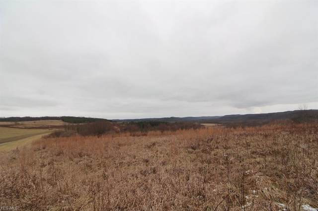 Township Road 118, Kimbolton, OH 43749 (MLS #4169153) :: RE/MAX Trends Realty