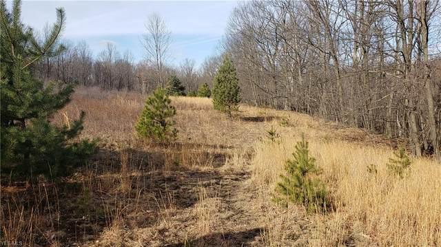 Sagamore Road, Walton Hills, OH 44146 (MLS #4169244) :: RE/MAX Trends Realty
